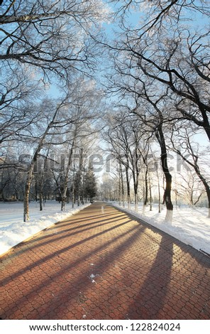 winter landscape in the city, the walkway in the park - stock photo