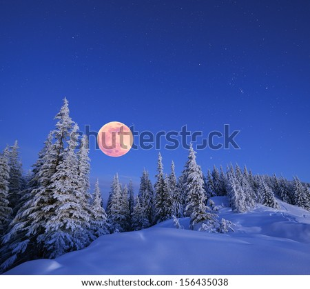 Winter landscape in the mountains at night. A full moon and a starry sky. Carpathians, Ukraine - stock photo