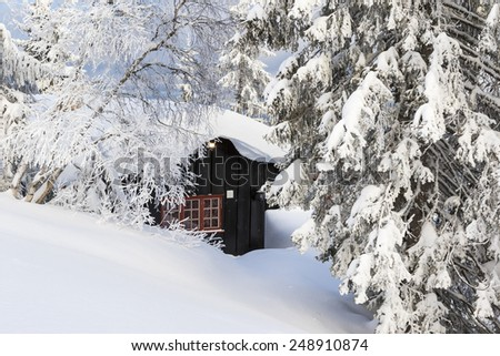 Winter Landscape Norway - stock photo