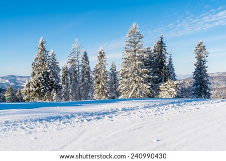 Winter landscape of Beskid Sadecki Mountains on sunny day, Poland