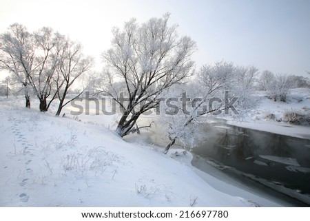 winter landscape of snow-covered fields, trees and river in the early misty morning - stock photo
