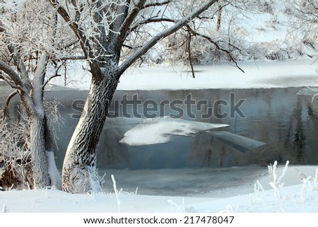 winter landscape of snow-covered fields, trees and river in the early misty morning