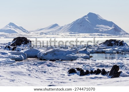 Winter landscape of the Arctic
