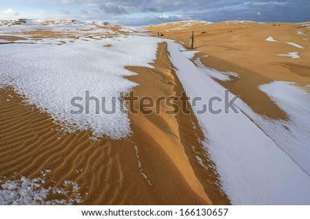 Winter landscape of the Silver Lake Sand Dunes, Silver Lake State Park, Michigan, USA