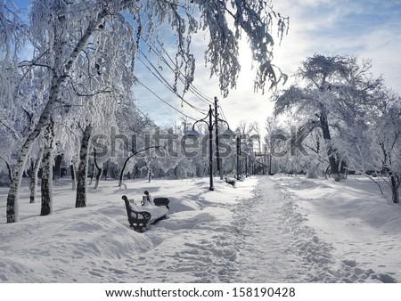 Winter landscape, scenery in park - stock photo