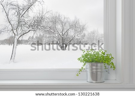 Winter landscape seen through the window, and green plant on a windowsill. - stock photo
