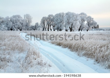 winter landscape snow-covered dirt road near the oak grove on a cloudy day - stock photo