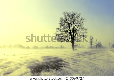 Winter landscape with a dreamy vintage look. Road with drifting snow.