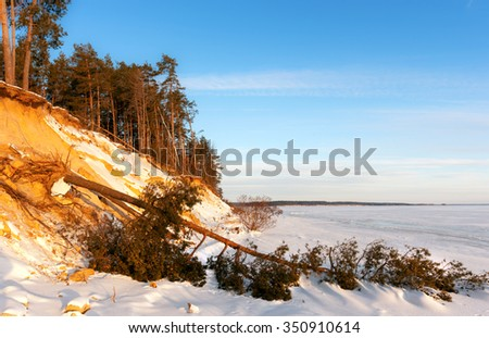 winter landscape with a fallen tree on the river bank