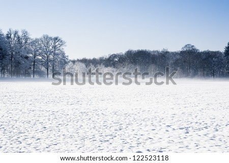 Winter landscape with a field of snow on the foreground - stock photo