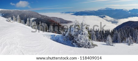 Winter landscape with a fog. Ukraine, Carpathians mountains