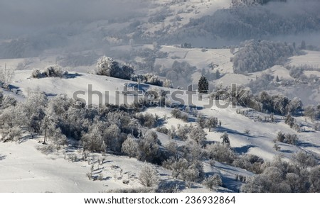 Winter landscape with a hut in a mountain forest. Snowstorm overcast day. Romania, Carpathian mountains - stock photo