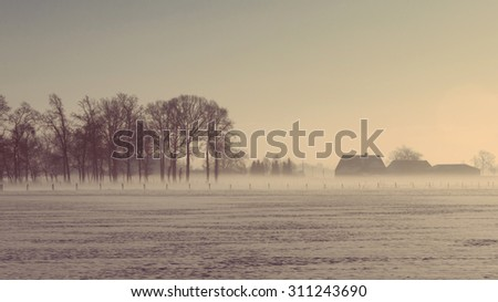 Winter landscape with dead trees and houses under snow and mist in soft focus vintage film effect with a letterbox view. - stock photo
