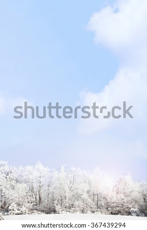 Winter landscape with expanse of sky.   - stock photo