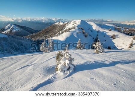 Winter landscape with forest and mountains.