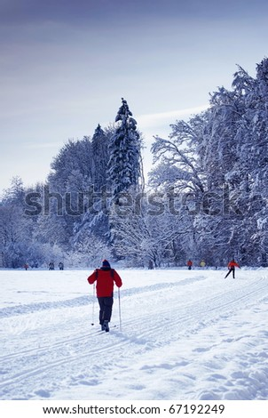 Winter landscape with forest,ski run and people skiing-Styria,Austria. - stock photo