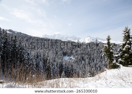 Winter landscape with mountains and forest /  Winter landscape on Monte Pana, South Tyrol, Italy. - stock photo