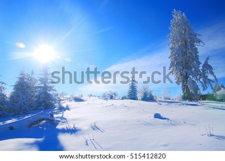 Winter landscape with snow covered trees and sunbeam with lens flare
