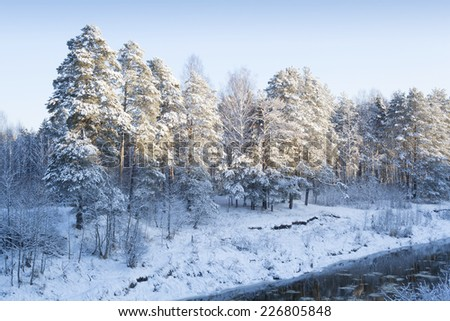 Winter landscape with snow covered trees. Eve of Christmas.  - stock photo