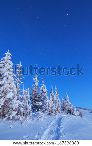 Winter landscape with snow drifts in a mountain forest - stock photo