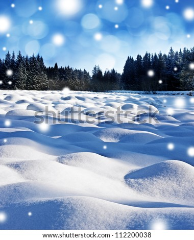 winter landscape with snow flakes - stock photo