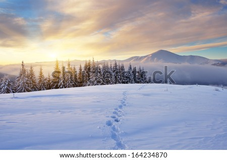 Winter landscape with sunrise in the mountains. The path in the snow. Carpathians, Ukraine, Europe - stock photo