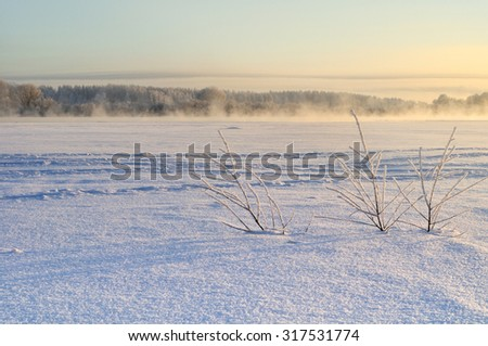 Winter landscape with the frozen river and fog at the sunset - focus at the frozen plants at the foreground - stock photo