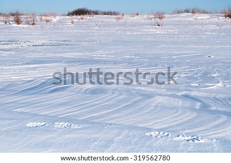 Winter landscape with the snowy waves at the field  at the sunset - focus  at the foreground - stock photo