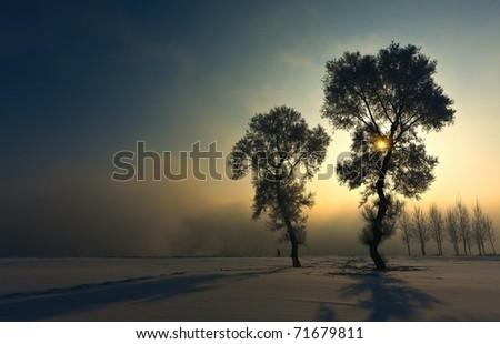 Winter light - stock photo