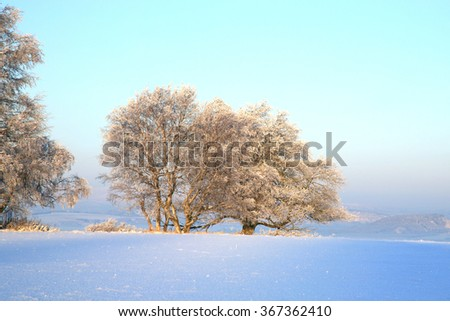 Winter meadow in Table Mountains in Poland Sudetes by early morning. - stock photo