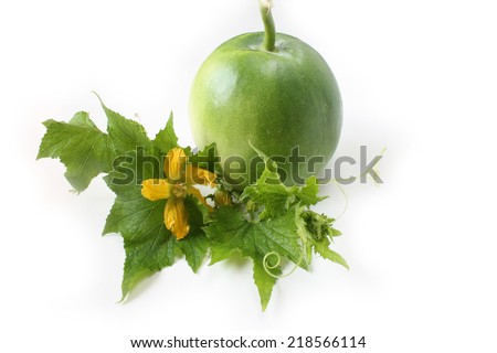 Winter melon on white background with flower and vine - stock photo