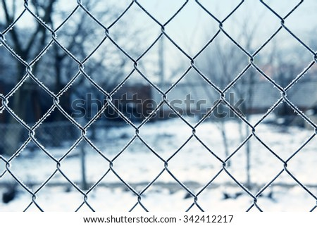 winter mesh background