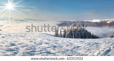 winter morning landscape in the Carpathian mountains