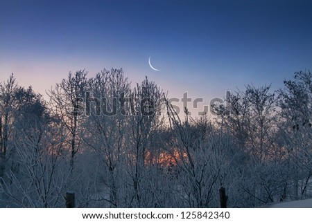 Winter morning with moon on the sky - stock photo