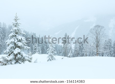 Winter mountain foggy dull day snowy landscape