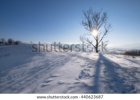 Winter mountain hills at sunny day