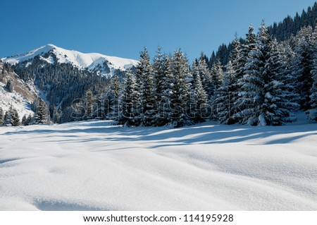 Winter mountain landscape and blue sky - stock photo