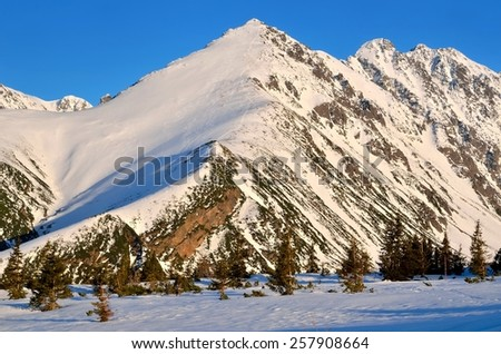 Winter mountain landscape. View on snow-capped peaks surrounding the Gasienicowa valley in Tatra mountains, Poland. - stock photo