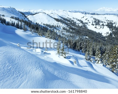 Winter mountain landscape with snowy spruce trees on slope(Hochkoenig region, Austria)