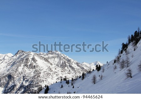 Winter mountains and forest under blue sky - stock photo