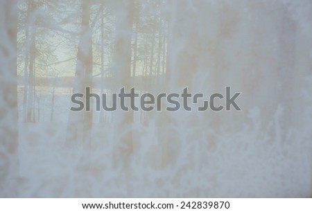 Winter natural background, texture. Beautiful patterns on the Windows