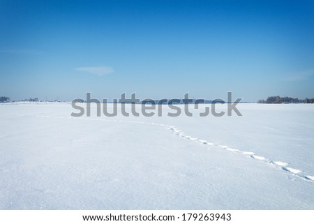 winter natural landscape covered with snow and blue sky