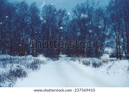 Winter natural landscape with lane through the dark misty forest - stock photo
