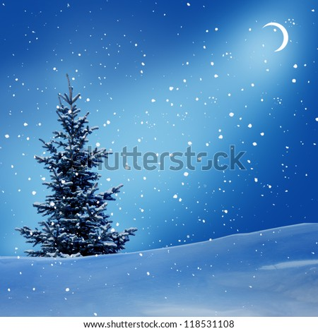 winter night - stock photo