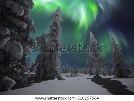winter night landscape with forest and polar northern lights canada america
