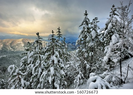 Winter on the mountain from Macedonia