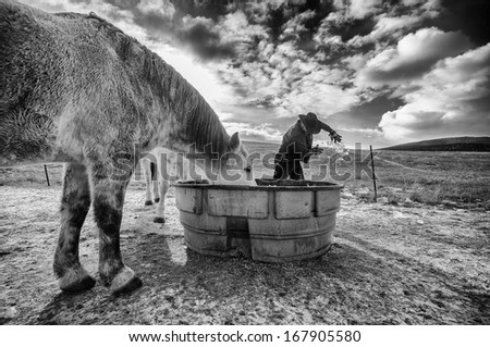 Winter on the ranch - stock photo
