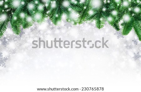Winter or Christmas background composed with an arch of fir twigs and snowflakes, blending into white copyspace as they fall - stock photo