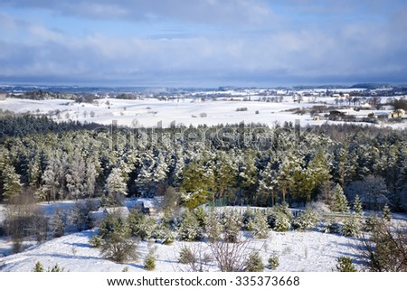 Winter panorama. Frozen trees, houses and meadows. - stock photo