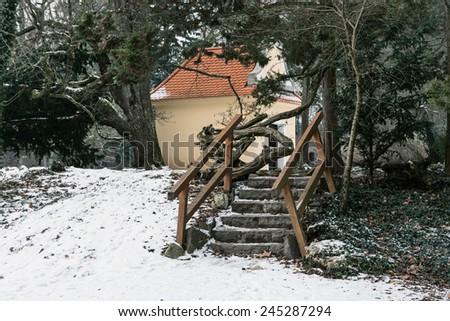 Winter park in Topolcianky, Slovak republic, central Europe. - stock photo